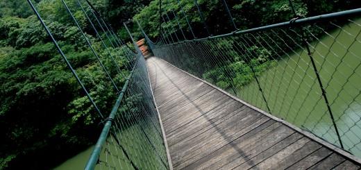 Подвесной мост в специальной природной области экотуризм Thenmala, в городе Коллам (Kollam) в Индии! Фото www.wikimedia.org