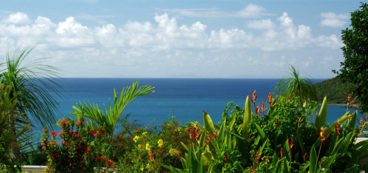 "Тихие отели на Карибах - ""Bellavista Bed and Breakfast"", Сент-Томас (U.S. Virgin Islands, St. Thomas). Фото www.bellavista-bnb.com"