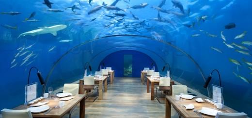 """Уникальный стеклянный ресторан """"Ithaa Undersea"""" в отеле """"Conrad Maldives Rangali Island"""". Фото www.conradhotels3.hilton.com"""