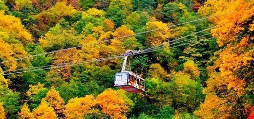 Осень - время приобретать тур в Японию на остров Хоккайдо!