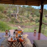 "Люкс шатры на Booking.com - ""Ximongwe Safari Camp"" (Greater Kruger National Park, Balule Game Reserve, Лимпопо, ЮАР, Африка)"