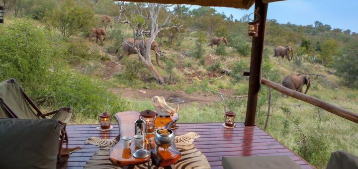 "Люкс шатры на Booking.com - ""Ximongwe Safari Camp"" (Greater Kruger National Park, Balule Game Reserve, Лимпопо, ЮАР, Африка)"